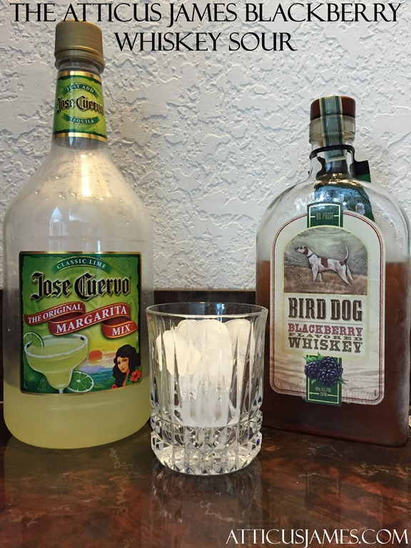 Bird Dog Blackberry Whiskey Review