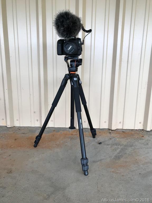 Vanguard ABEO 243AV SHORT w/ Canon 80D