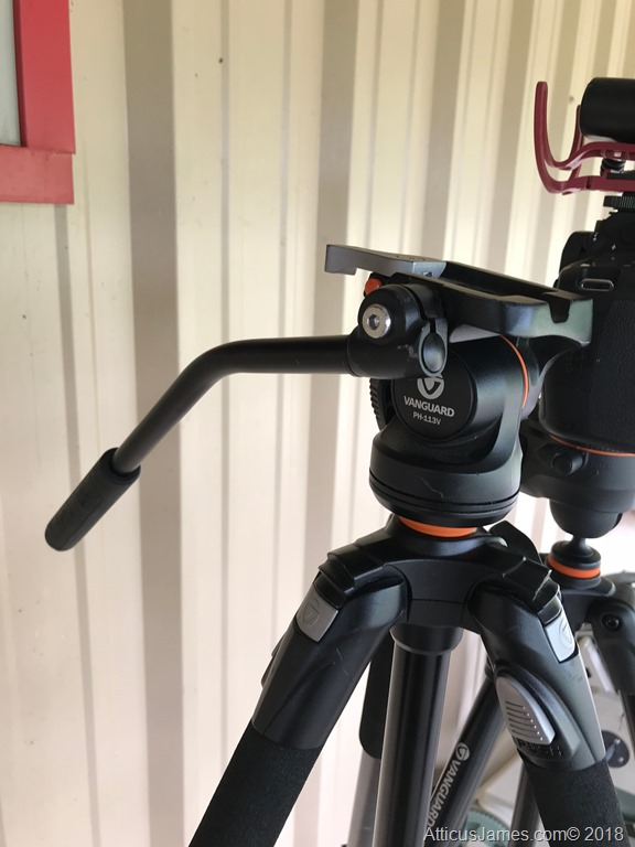 Vanguard PH113V head mounted to the ABEO 243AV tripod
